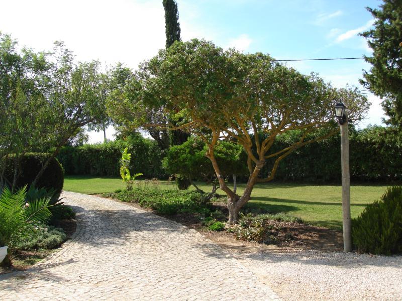 Garden path to Cottage Apartment