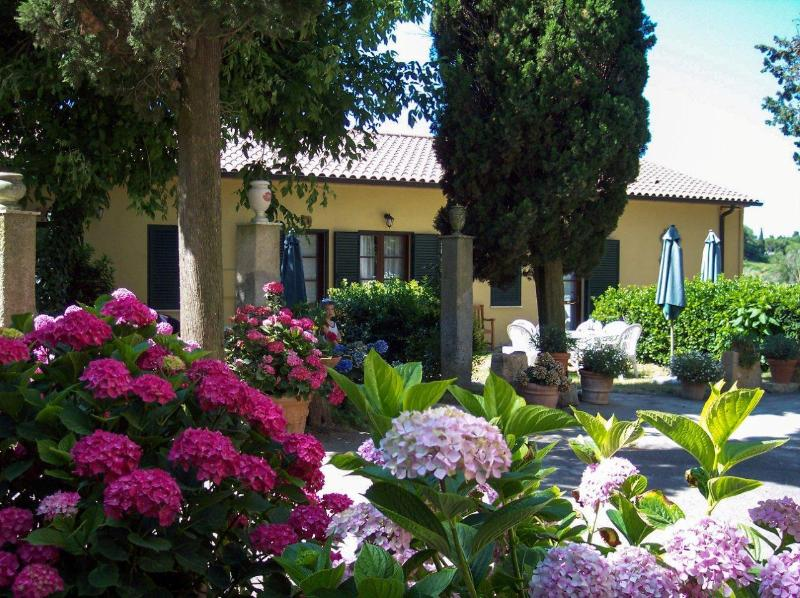 Residence Villa Elena. Annexes