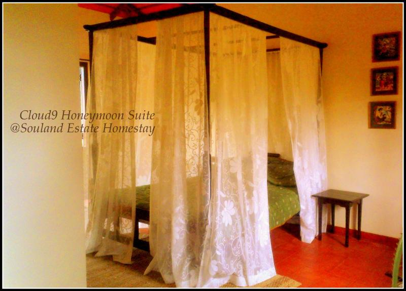 Cloud 9, holiday rental in Coorg
