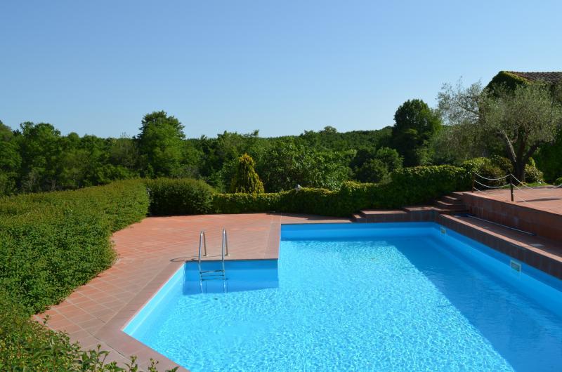 piscina panorámica, paisaje salvaje y silenciosa del bosque alrededor