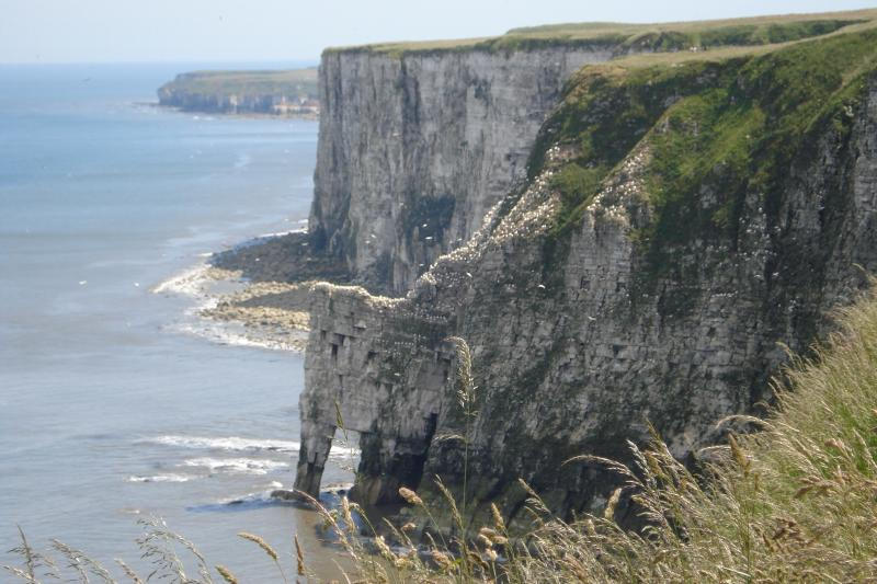 Flamborough Head acantilados