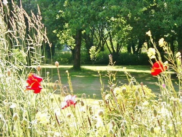 Verken de natuurlijke fauna tuin.