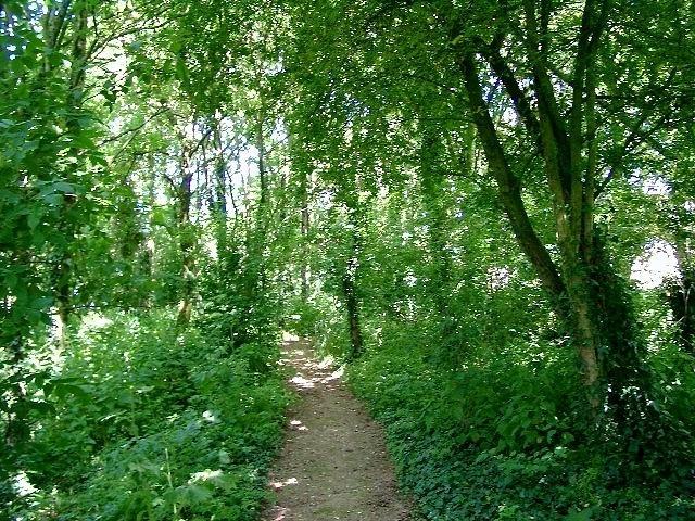 Maak een wandeling rond de tuin na de lunch.