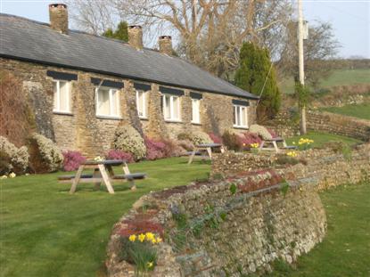 Devon dry stone walls
