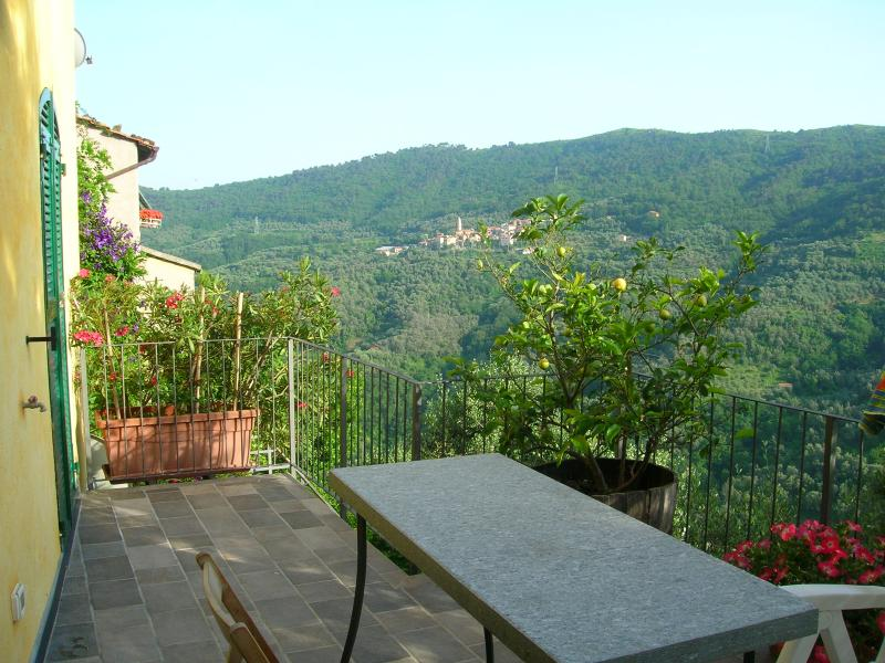 I Due Limoni, holiday rental in Boscomare