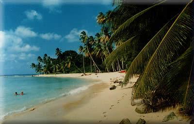 Our West Coast Beach.