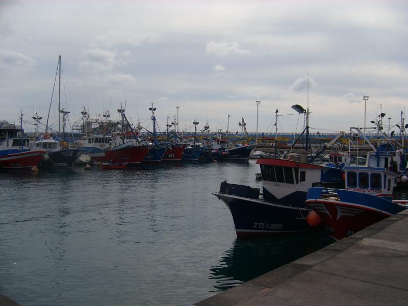 LOS CRISTIANOS FISHING PORT