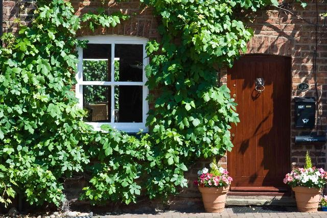 Vine Cottage Welcoming Holiday Home