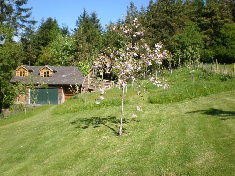 Spring at the Barn