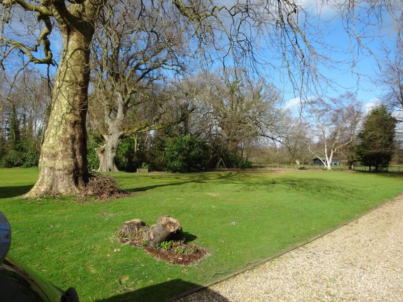 The rear communal gardens at The Bothy