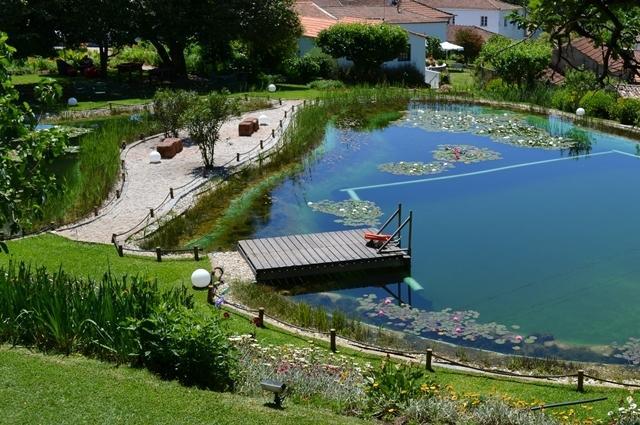 Biological Swimming Pool and lake