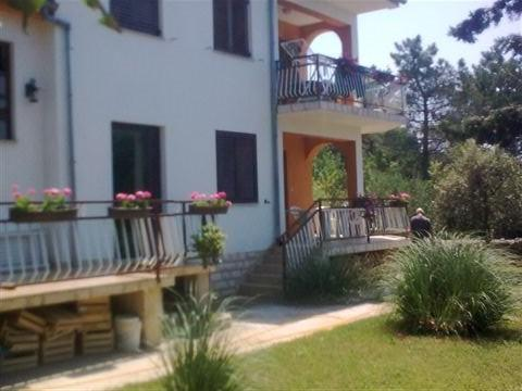Toti, holiday rental in Petrcane