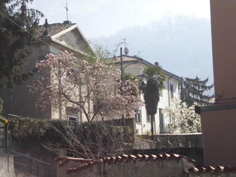 Church near the apartment