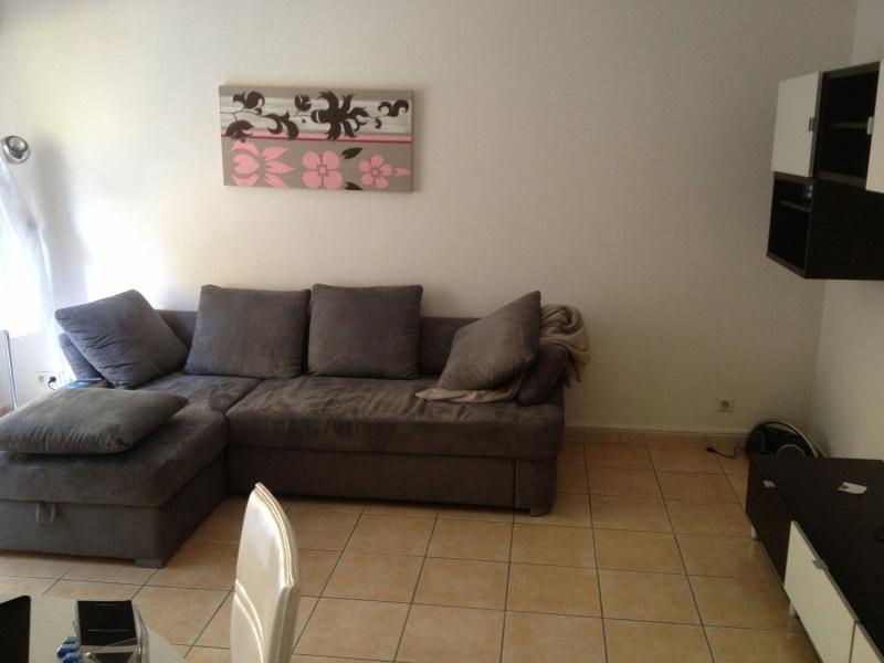 Salon climatisé avec son canapé lit, table et 4 chaises, TV