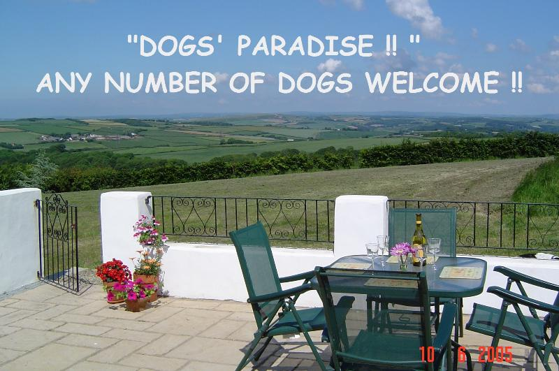 THE VIEW!!! ENCLOSED PATIO, MASSIVE LAWN , & 8 ACRE WOODS.... WHAT MORE COULD YOUR DOGS WANT???