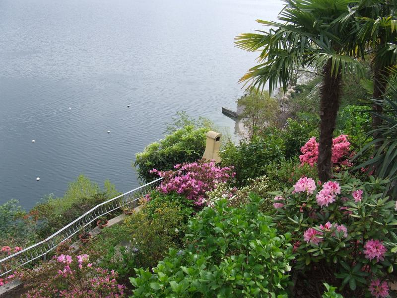Lake view from the terraced garden
