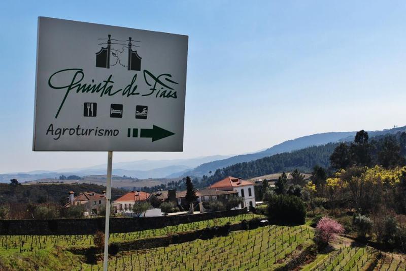Quinta de Fiães- Agroturismo
