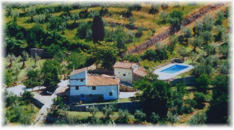 Agriturismo Montereggi con piscina - appartamento Saletta, holiday rental in Pratolino