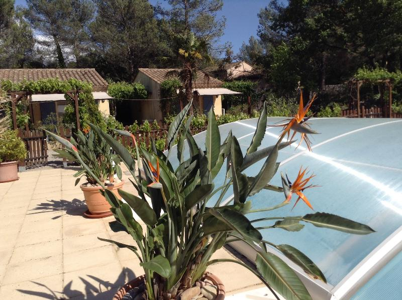 Les Glycines, holiday rental in Figanieres