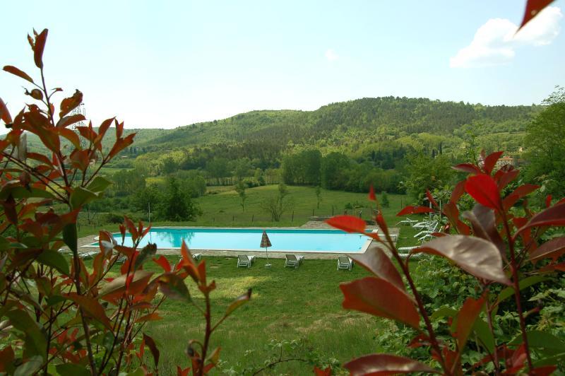 Romantic villa Chianti, Wi-Fi, cooking classes, weddings, alquiler de vacaciones en Bucine