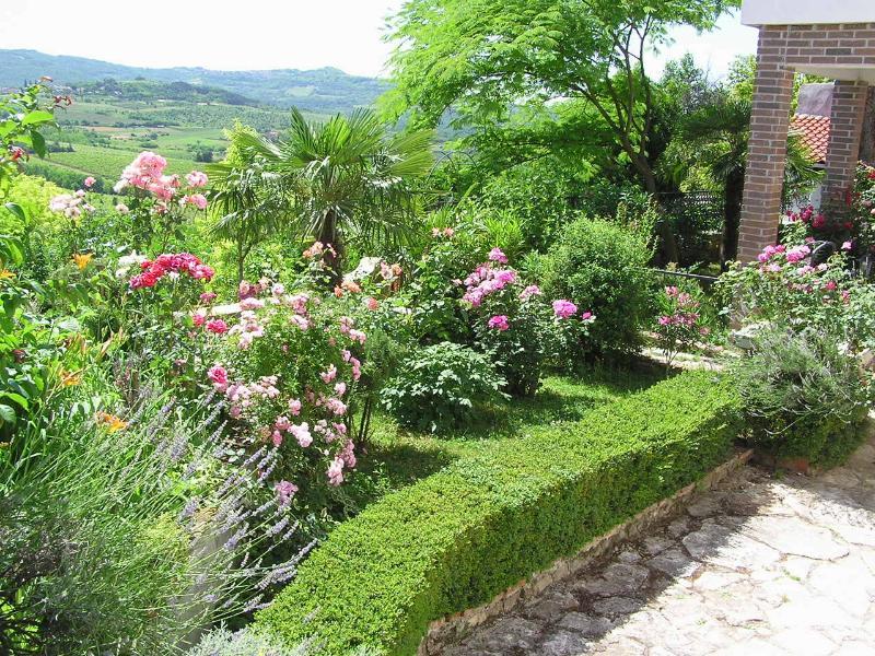 Garden in May/June