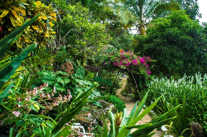 Ahhh...Ras Natango Gallery & Garden - wonderful, magical place and one of our tour locations.