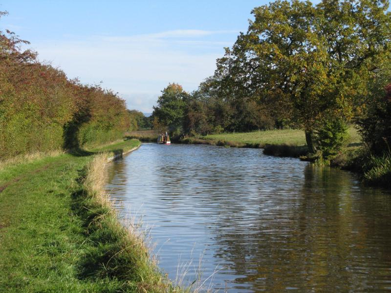 Local canal walk - from the doorstep