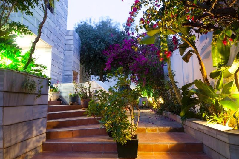 Garden/ entrance