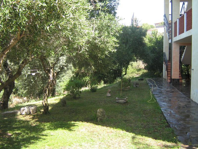 Viale alberato che porta all'ingresso dell'abitazione fiancheggiando il giardino.