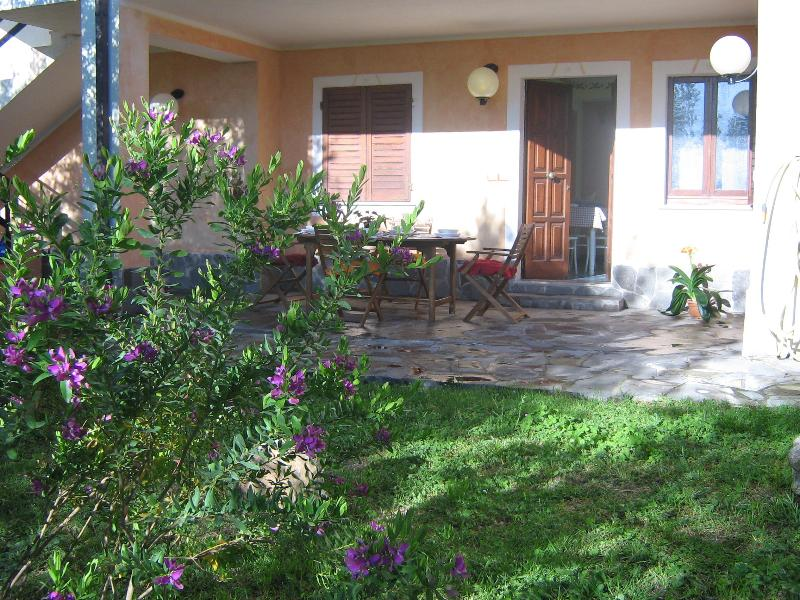 Lush garden with plants, olive tree in front of the veranda.