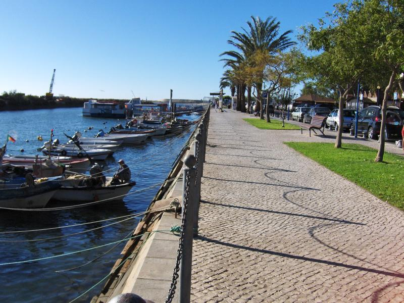 Stroll to the ferry along the palm lined waterfront