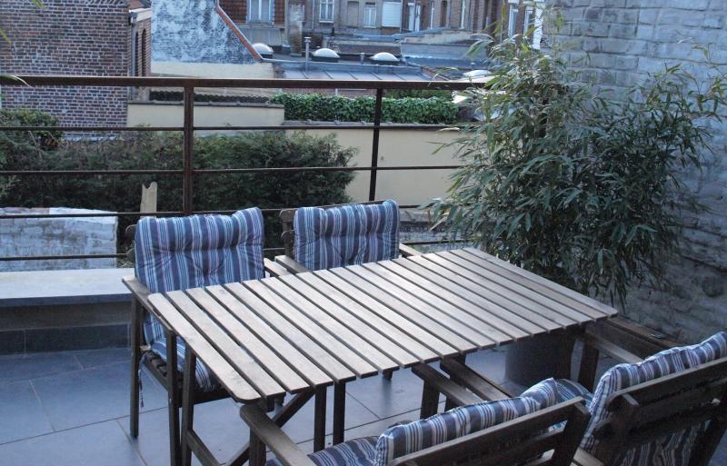 Terrasse suspendue privée / Private Terrace