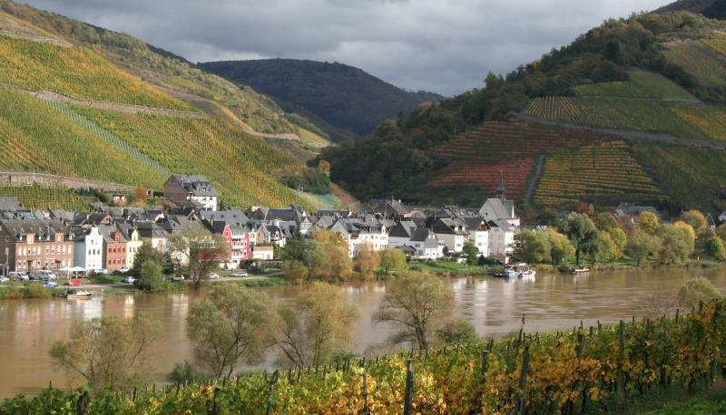 Zell / Mosel in autumn