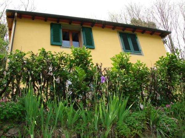 Casa Isabella exterior, with irises