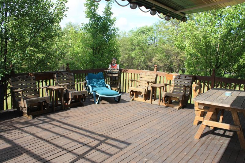 Custom Amish furniture on large deck; seating for 12; large picnic table; grill & awning for shade
