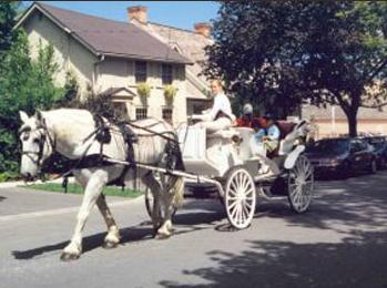 Buggy Ride - Old Towne
