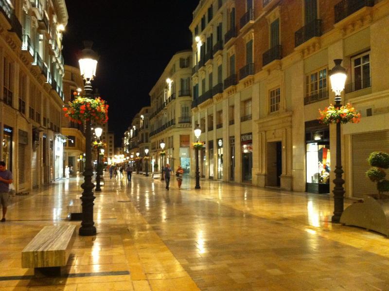 Calle Larios a 20 minutos paseando