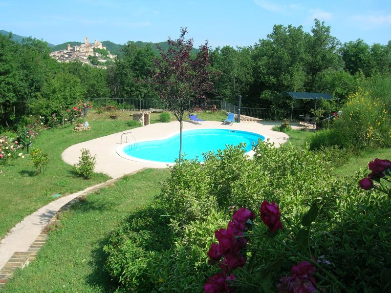 Garden and swimming pool of the Colle della Sibilla property