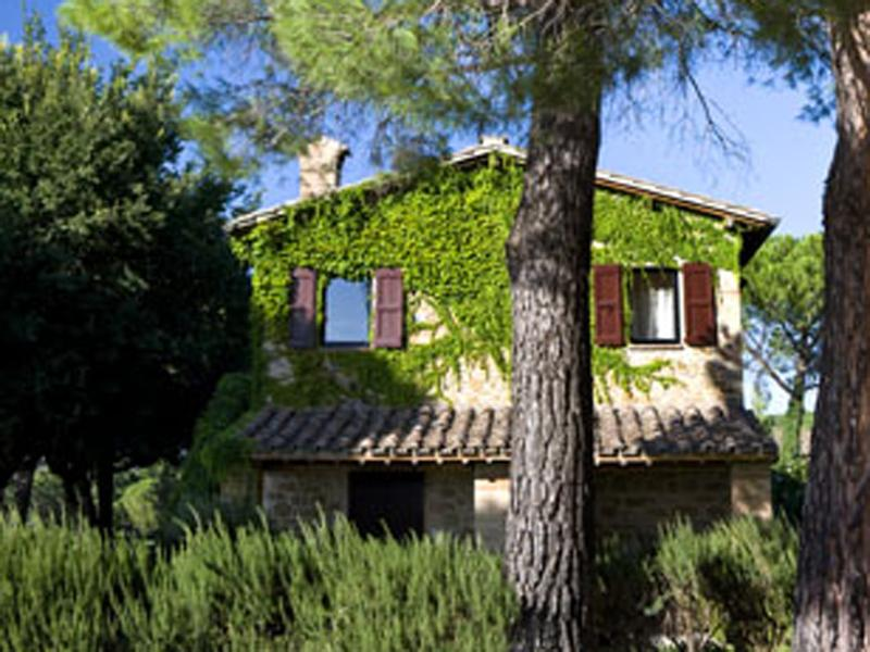 Agriturismo Poggio alle Vigne, location de vacances à Torgiano