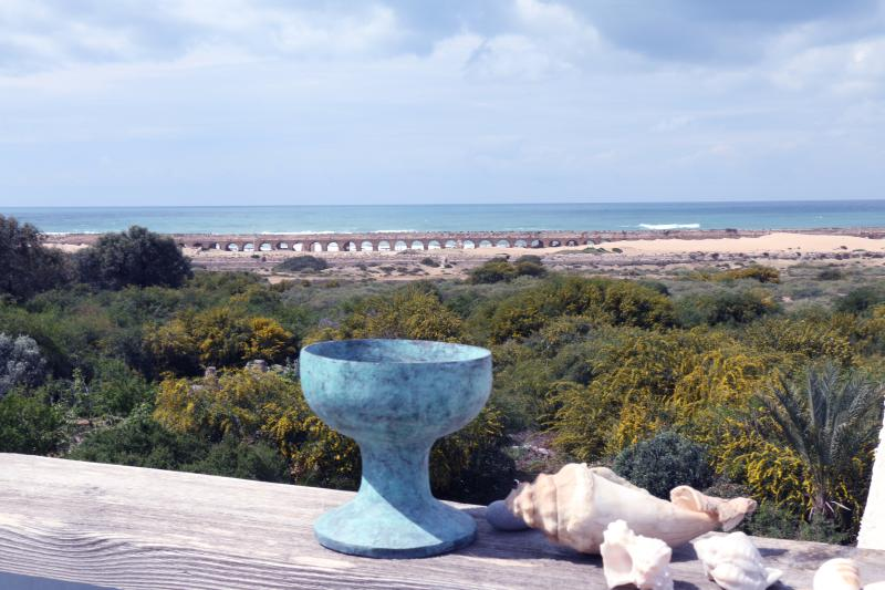 beachfront  house, location de vacances à Or Akiva