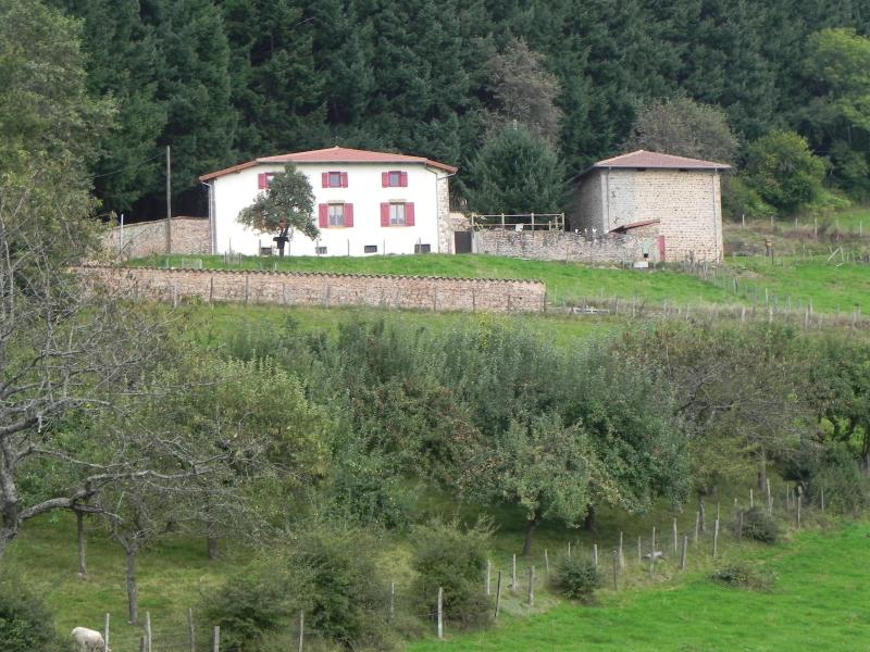 Les Sabots familial Ferme des Entremains, holiday rental in Bourg-de-Thizy