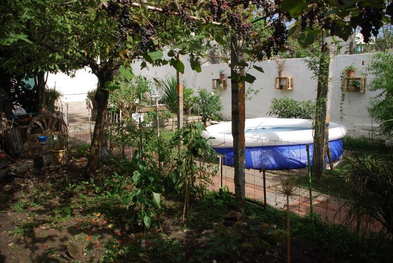 Nuestro Huerto Orgánico / Our organic garden