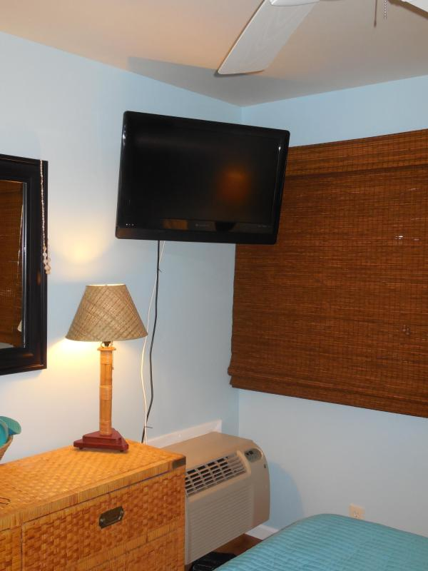 Flat Screen TV and Air Conditioning in Bedroom