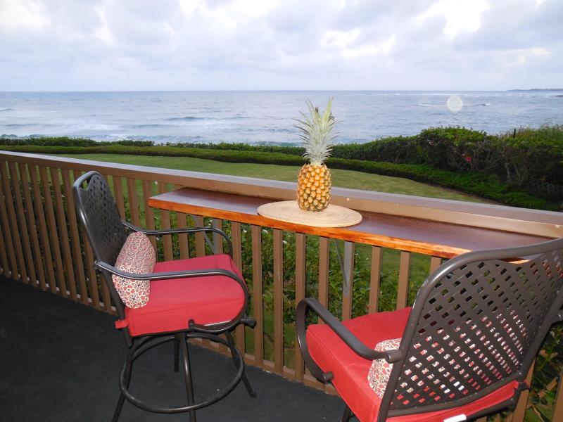 Enjoy meals and/or your favorite beverage from your private Lanai
