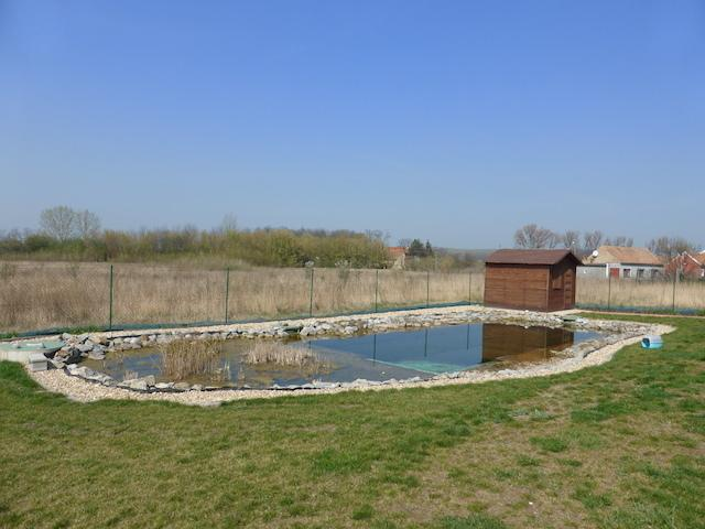 The swimming pool and the wooden hut