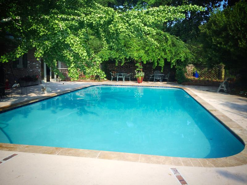 Long Vacation? Thinking of moving to Charleston? In the city, pool, marsh., alquiler vacacional en Fenwick Island