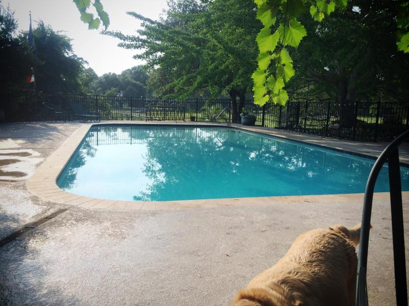 Totally Private pool overlooking marsh on two acre lot