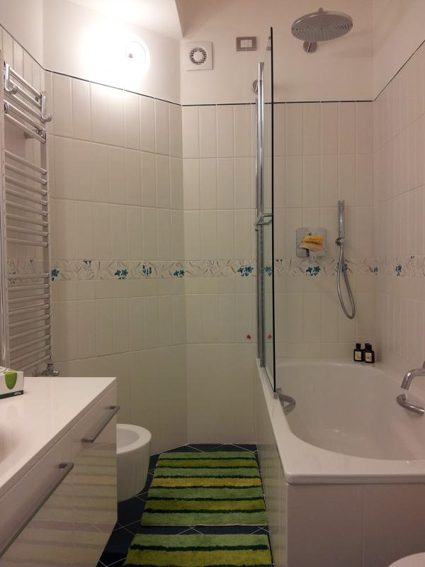 main bathroom with bathtub and shower fixed