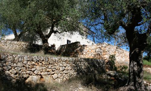 Casa Calandra, casa vacanza a Sorbola