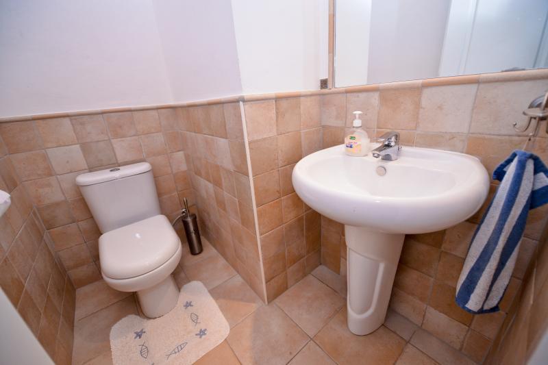 Daily toilet